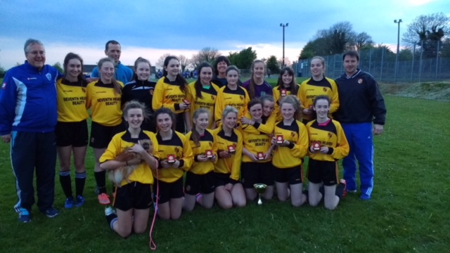 Under 16 Limerick County Girls Cup Winners